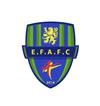 logo du club A.S. AULNOYE-AYMERIES FOOT
