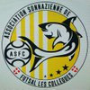 logo du club Association Sonnazienne de Futsal les Collègues