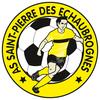 logo du club ASSOCIATION SPORTIVE DE SAINT PIERRE