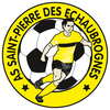 logo du club ASSOCIATION SPORTIVE DE SAINT PIERRE