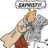 Tintin Sourdin