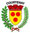 logo du club avenir football club de Courtenay