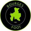 logo du club BOURGES FOOT