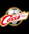 logo du club Club Omnisports SAINT SATURNIN Arche