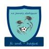 logo du club Football club Sud-Hague