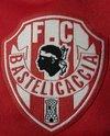 logo du club F.C.Bastelicaccia