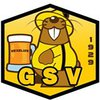logo du club GROUPE SPORTIF DE VÉZELISE