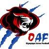 logo du club Olympique Arras Football