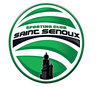 logo du club Sporting Club SAINT SENOUX