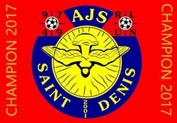 AJS ST DENIS CHAMPION D2 POULE B