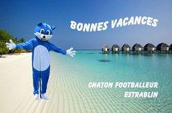Bonnes vacances - CHATON FOOTBALLEUR D'ESTRABLIN