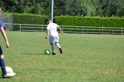 Les U6/U7/U8/U9 à l'entraînement - Entente Football Châtaigneraie Veinazes