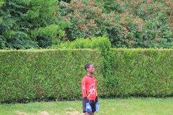 Tournoi de Rosny U13 (Foot à 11) - AS FONTENAY-LE-FLEURY FOOTBALL