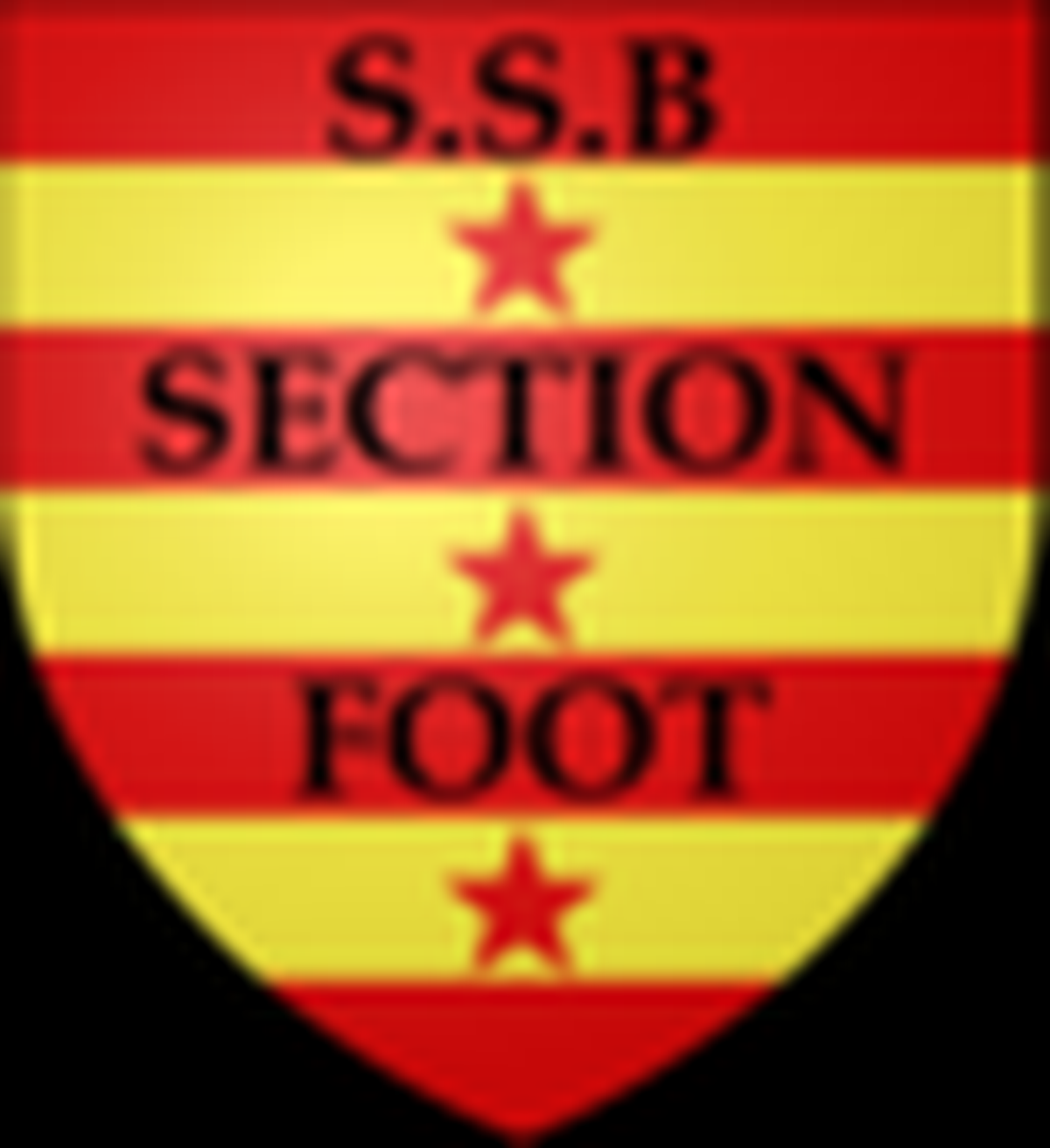 logo du club  Bonnat Section Foot
