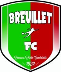 Logo BFC 2015