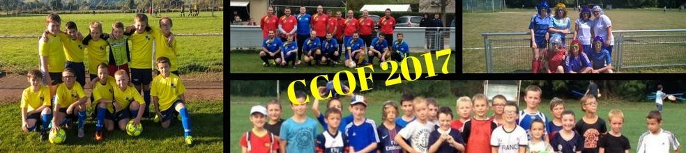Centre Cote d'Or Football : site officiel du club de foot de Verrey sous Salmaise - footeo