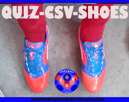 csv-shoes-008-cs villedieu
