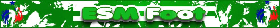 ESPÉRANCE SPORTIVE MONTIGNACOISE : site officiel du club de foot de MONTIGNAC - footeo