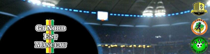 GJ NORD-EST MANCEAU : site officiel du club de foot de SARGE LES LE MANS - footeo