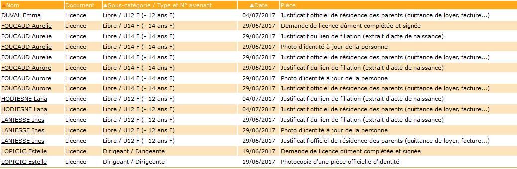 licence02.jpg