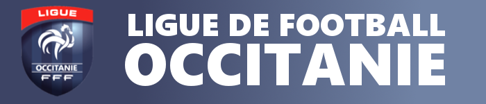 ligue occitanie.jpg