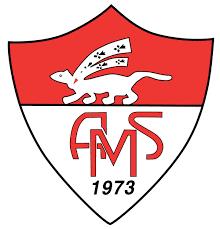 AS Vannes Ménimur