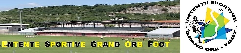UNION SPORTIVE BEDARICIENNE PAYS D'ORB GRAVEZON : site officiel du club de foot de BEDARIEUX - footeo