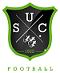 logo du club UNION SPORTIVE CASTELNEUVIENNE FOOT