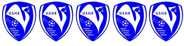 UNION SPORTIVE HAUTE BRESSE : site officiel du club de foot de ST TRIVIER DE COURTES - footeo