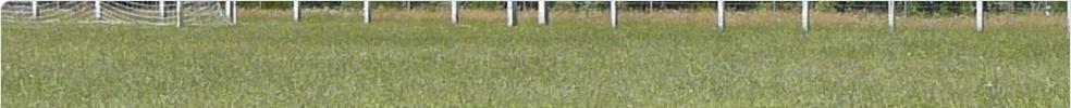 US LA GARDE LOUBARESSE : site officiel du club de foot de CHALIERS - footeo
