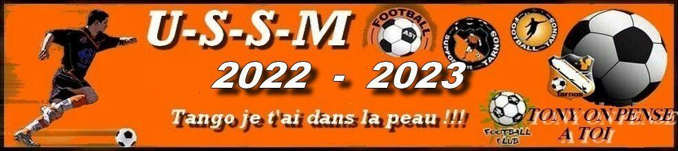 Union Sportive San Martinoise ( USSM ) : site officiel du club de foot de ST MARTIN EN BRESSE - footeo