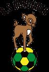 logo du club AS Magenta