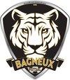 logo du club BAGNEUX FUTSAL