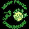 logo du club Etoile Filante IRACOUBO