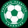 logo du club Entente Sportive Ahunoise