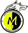 logo du club Élite Sportive de Mastaing Football Club
