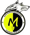 logo du club Élite Sportive de Mastaing Football Club