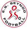 logo du club Etoile sportive Seynod football