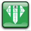logo du club ENTENTE SPORTIVE USSELLOISE
