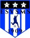logo du club Entente Sportive Verdelais-St Maixant-Semens