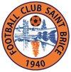 logo du club FOOTBALL CLUB DE SAINT-BRICE SUR VIENNE