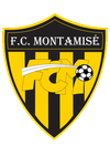 logo du club Football Club Montamisé