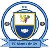 logo du club FC Monts de GY