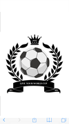 logo du club LIVE YOUR WORLD CUP