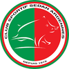 logo du club CS SEDAN ARDENNE