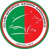 logo du club CS SEDAN ARDENNE