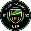 logo du club union sportive planaise