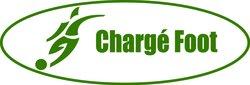 logo du club Elan Sportif de Chargé
