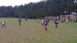U12/U13 B - U10/U11 (Amical) - FC GUIGNES