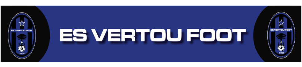 Étoile Sportive Vertou Foot : site officiel du club de foot de Vertou - footeo